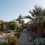 Foto di Three Corners Fayrouz Plaza Beach Resort