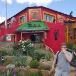 Hog Pub & Grill
