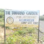 Tamarind 2