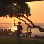 Beach Tree Bar & Grill Foto