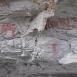 rock paintings at the San cave