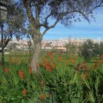 Felicio Loureiro Urban Park