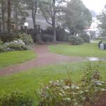 Room 3914 - view onto gardens