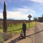 Biking off of W Dry Creek Rd