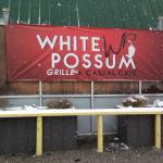 White Possum Foto