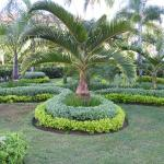 Photo de Luxury Bahia Principe Bouganville Don Pablo Collection