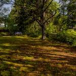 Sojourner Garden