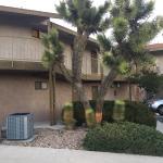 Foto di Travelodge Inn and Suites Yucca Valley/Joshua Tree Nat'l Park