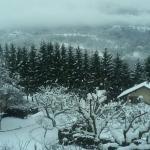 Photo de Hotel La Petite Auberge