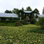 La Casa de los Limoneros Image