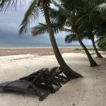 Foto de Cowrie Shell Beach Apartments