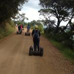 ON the beaten track - and fast !