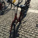 Foto de Fat Tire Bike Tours