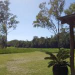 The grounds are fantastic including the platypus viewing are. Great place to relax and enjoy a g