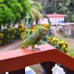 Cabanas Rolo Photo