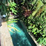 Sunclad Villa Photo