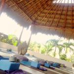 Red Buddha Yoga & Wellness