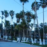 Foto de La Concha Beach Resort