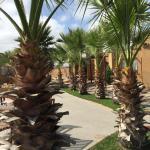 Serena Suite Park Hotel Foto
