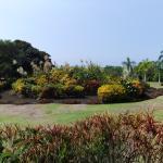 The Galaxy Garden