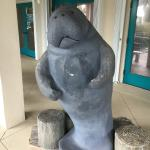 Manatee Observation & Education Center Foto
