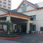Front of the Homewood Suites