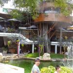 Ảnh về Du Mien Garden Cafe