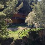 Photo of Finepark Bungalows