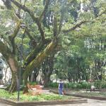 Praça Nereu Ramos