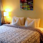One of our King Bed Suites