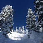 Grand Targhee Ski Resort