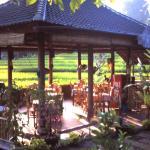 Puri Sawah Restaurant