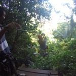 Ziplining in Phuket!