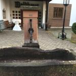 Landhotel Waldhaus Foto