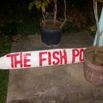The Fish Pot Foto