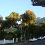 view of Table Mountain from the street
