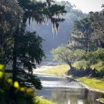 Historic Suwannee River