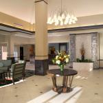 Foto di Hilton Garden Inn Albany / SUNY Area