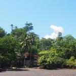 Das Resort,versteckt zwischen Regen- und Mangrovenwald.