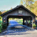 Cedar Falls Cabin Rentals