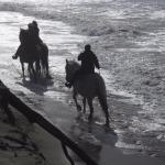 Bandon Beach Riding Stables Foto