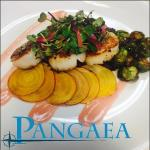 Pan Seared Diver Scallops