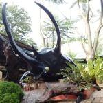 Melaka Butterfly and Reptile Sanctuary Photo