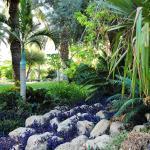 Ein Gedi Botanic Garden
