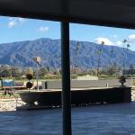 view of the horses on the track from inside the 1934 Santa Anita Park.
