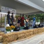 Photo from the Bluegrass festival 2015