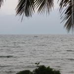 Aussicht auf den See