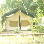 Фотография Oldarpoi Mara Camp
