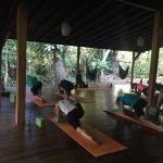 Morning Yin Yoga Class