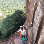 climbing (173721151)